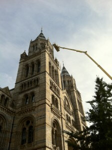 Bailey-Consulting scaling new heights at The Natural History Museum